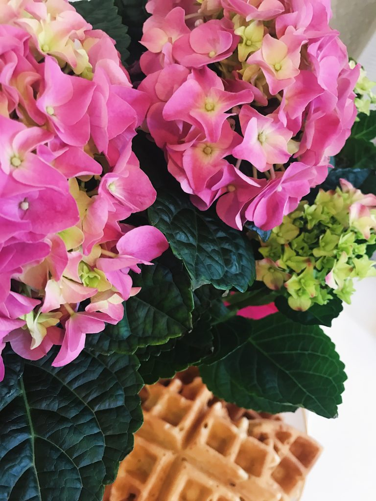 Galentine's Day Flowers and Waffles