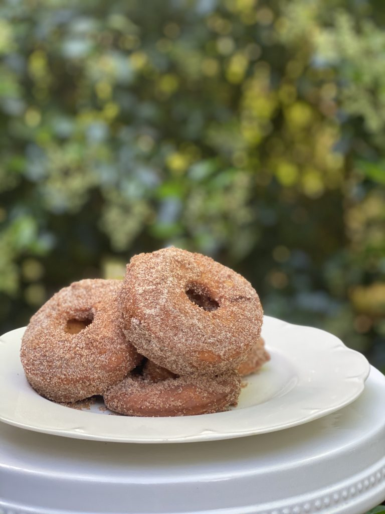 Low-Fat Yeast Free Donuts